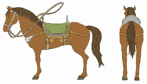 Transparent Donkey Horse Halter Bridle Clipart for Animals
