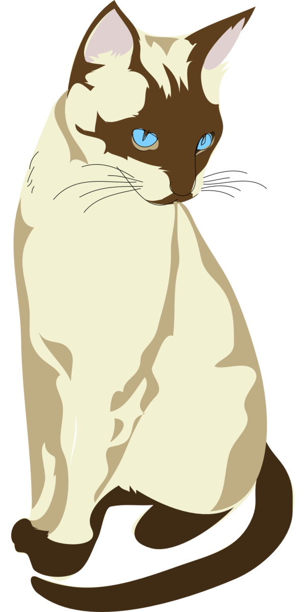 Transparent Cat Cat Whiskers Paw Clipart for Animals