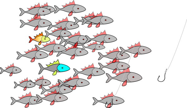 Transparent Fishing Line Tree Drawing Clipart for Sports