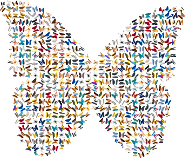 Transparent Butterfly Line Symmetry Clipart for Animals