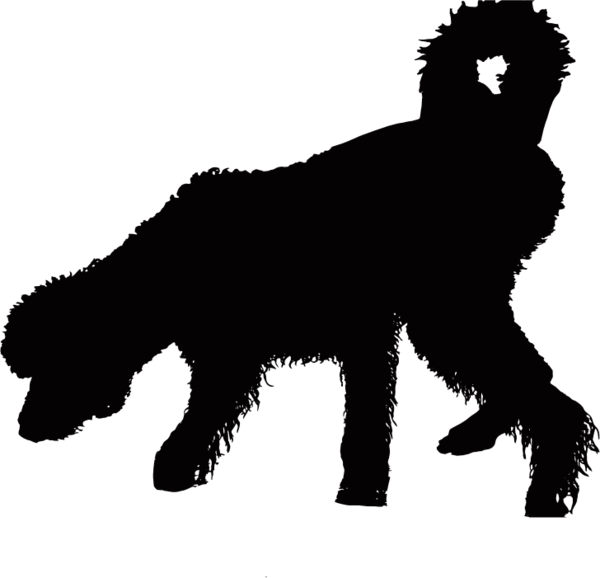 Transparent Bear Dog Silhouette Black And White Clipart for Animals