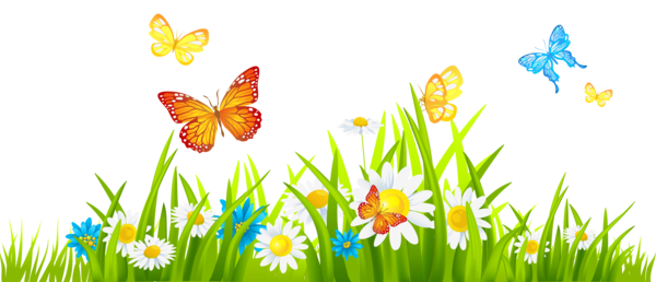 Transparent Butterfly Flower Grass Meadow Clipart for Animals
