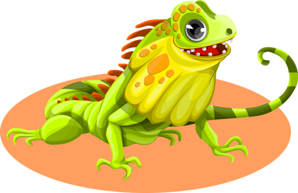 Transparent Frog Frog Reptile Toad Clipart for Animals