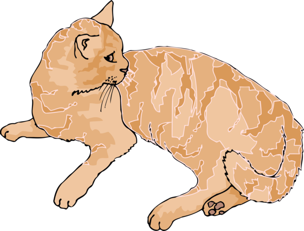Transparent Cat Cat Nose Whiskers Clipart for Animals