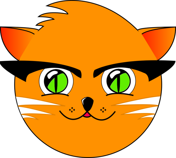 Transparent Cat Cat Face Whiskers Clipart for Animals