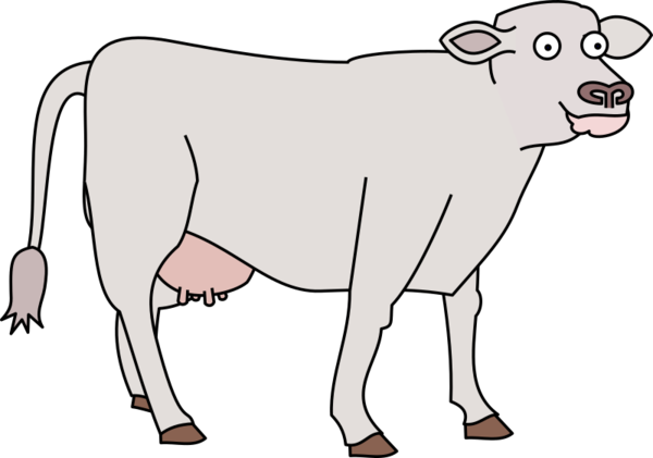 Transparent Cow Dairy Cow Horn Nose Clipart for Animals