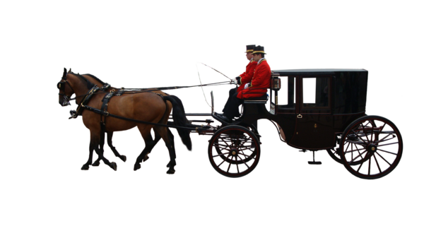 Transparent Horse Horse And Buggy Carriage Horse Harness Clipart for Animals