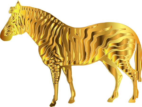 Transparent Giraffe Zebra Horse Mane Clipart for Animals