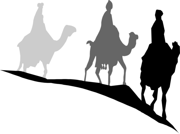Transparent Camel Black And White Silhouette Camel Clipart for Animals