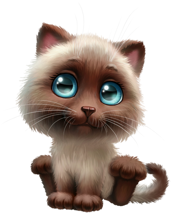 Transparent Cat Cat Whiskers Nose Clipart for Animals
