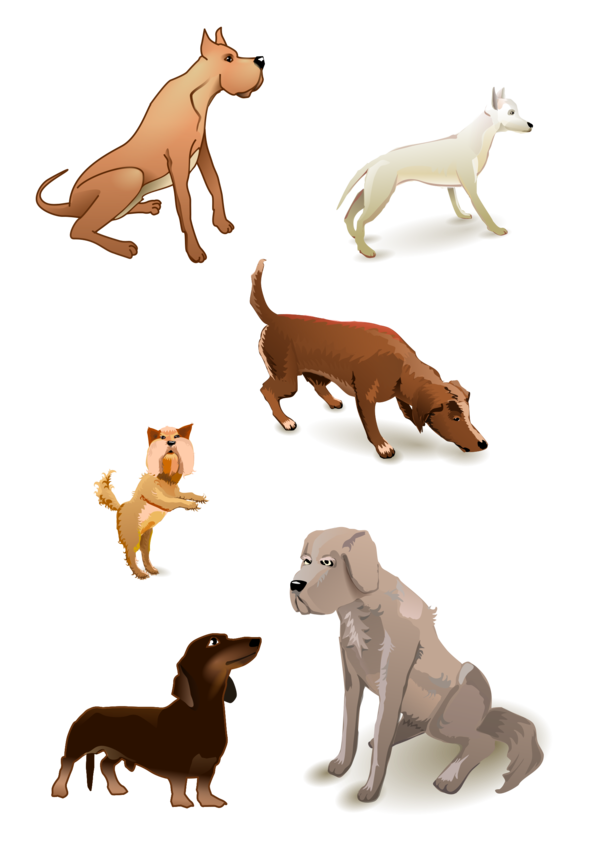 Transparent Cat Dog Wildlife Tail Clipart for Animals