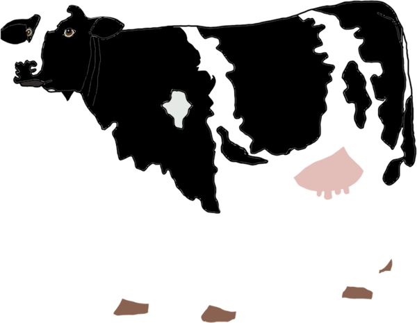 Transparent Cow Dairy Cow Ox Horn Clipart for Animals