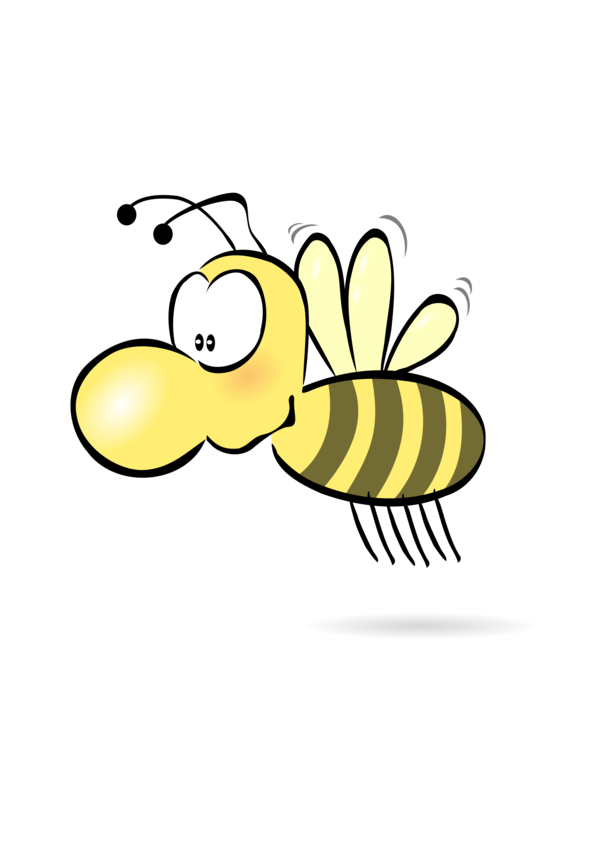 Transparent Bee Insect Honey Bee Pollinator Clipart for Animals
