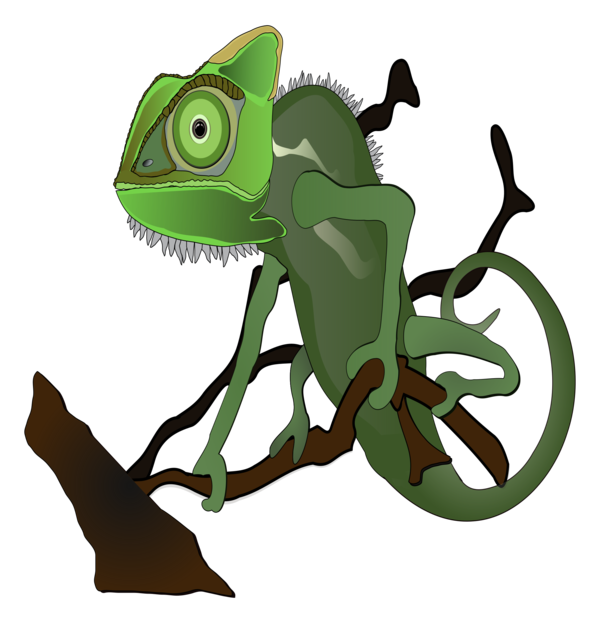 Transparent Frog Reptile Cartoon Frog Clipart for Animals
