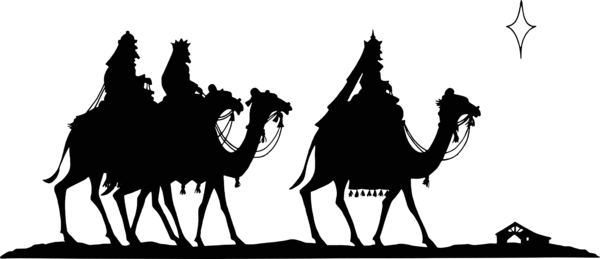 Transparent Camel Camel Black And White Camel Like Mammal Clipart for Animals