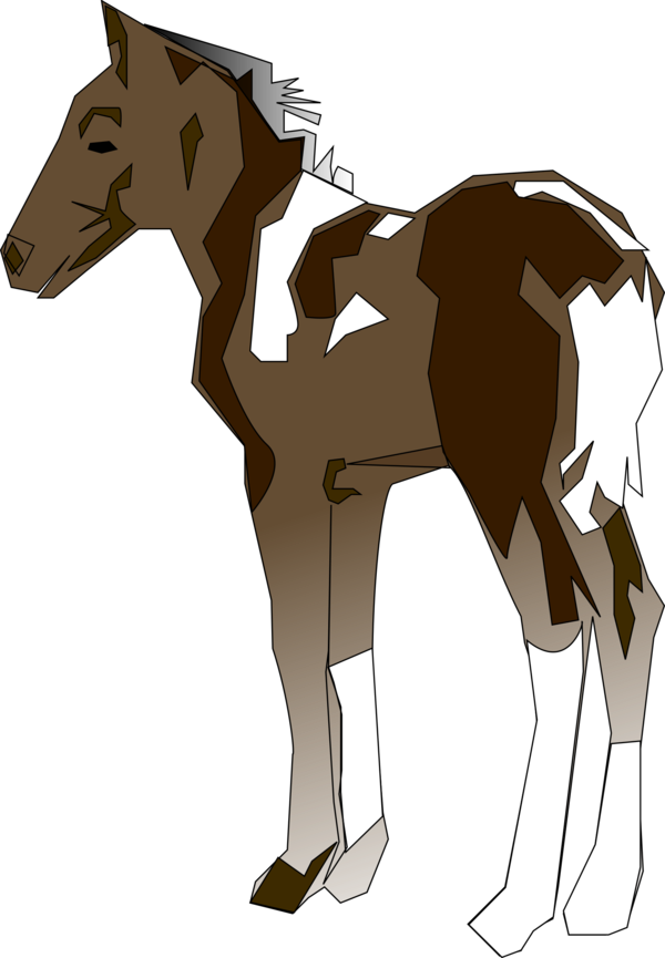 Transparent Donkey Horse Halter Mane Clipart for Animals