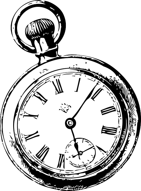 Transparent Rabbit Black And White Watch Line Clipart for Animals