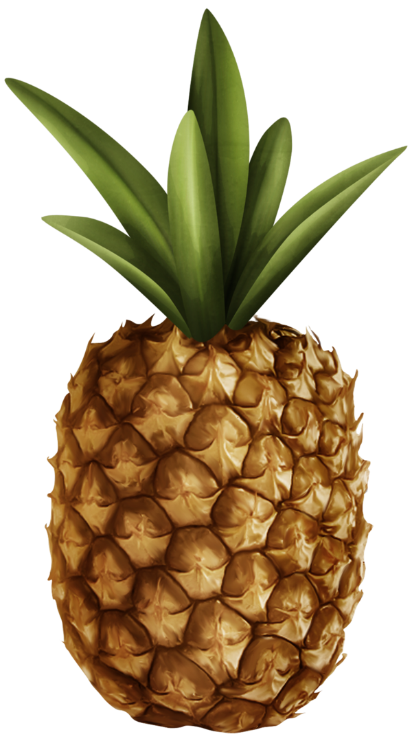 Transparent Juice Ananas Pineapple Fruit Clipart for Drink