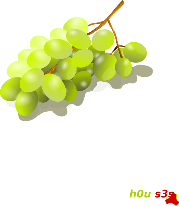 Transparent Tree Grape Fruit Grapevine Family Clipart for Nature