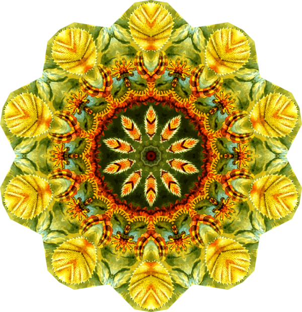Transparent Sewing Flower Symmetry Clipart for Clothing