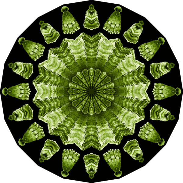 Transparent Tree Leaf Circle Symmetry Clipart for Nature