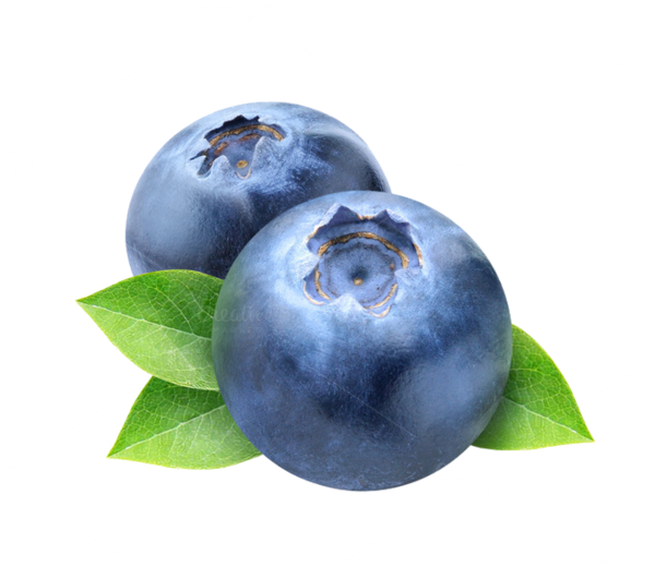 Transparent Tea Blueberry Fruit Bilberry Clipart for Drink
