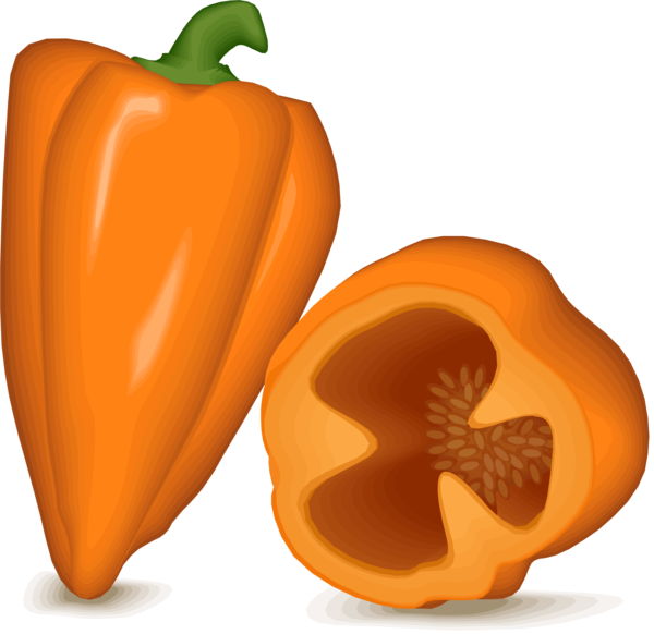 Transparent Winter Natural Foods Vegetable Winter Squash Clipart for Nature