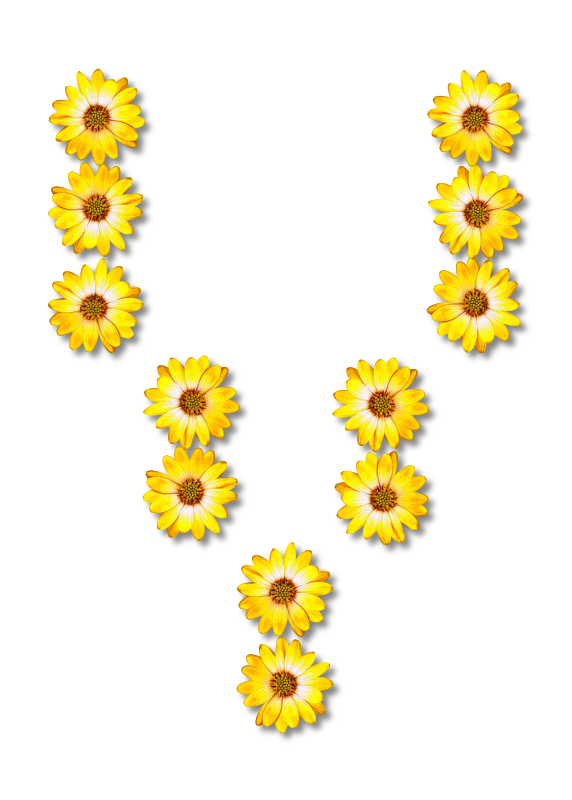 Free Sunflower Body Jewelry Flower Line Clipart Clipart Transparent Background