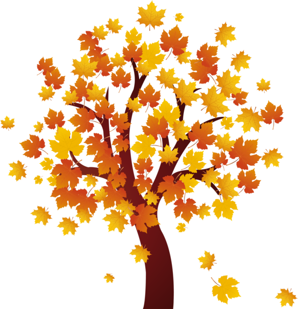 Transparent Autumn Tree Woody Plant Branch Clipart for Nature