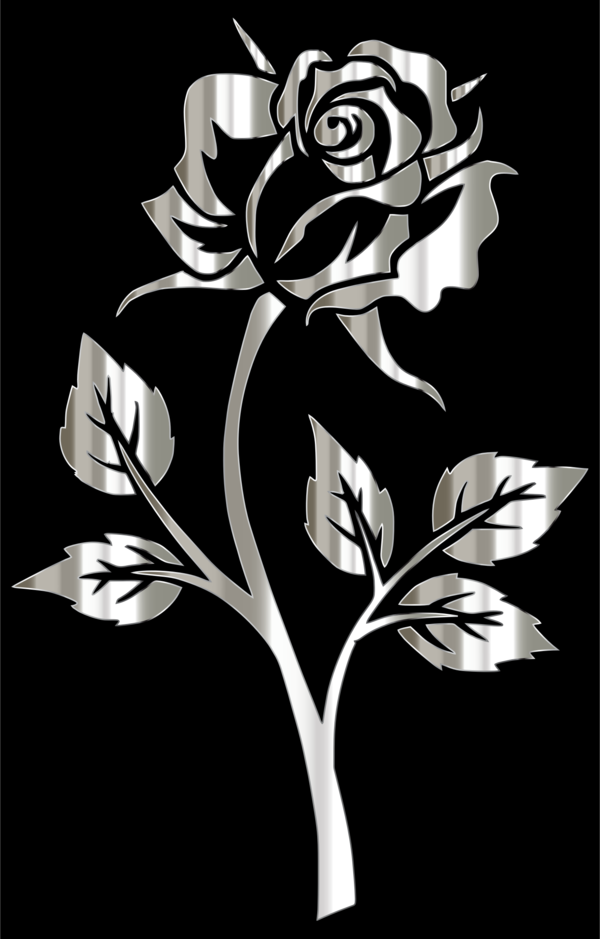 Transparent Rose Flower Black And White Flora Clipart for Flowers