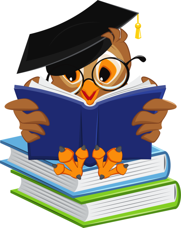 Transparent Reading Reading Bird Clipart for Activities