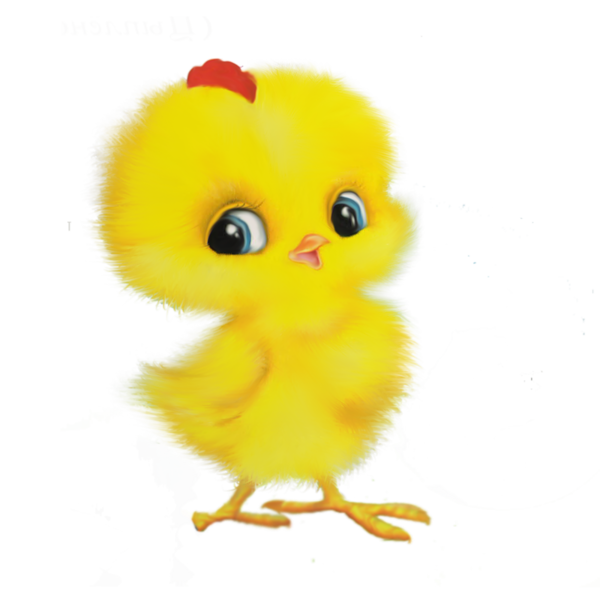 Transparent Bird Water Bird Stuffed Toy Material Clipart for Animals