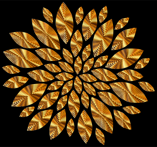 Transparent Leaf Leaf Symmetry Still Life Photography Clipart for Nature