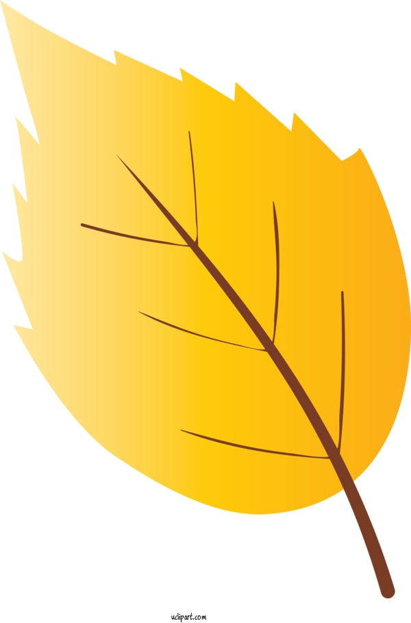 Transparent Nature Leaf Yellow Plant For Leaf for Nature
