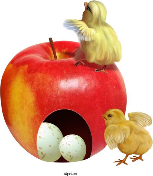 Transparent Holidays Chicken Apple Bird For Easter for Holidays