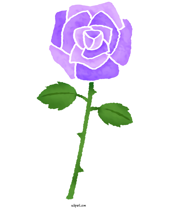 Transparent Flowers Garden Roses Drawing Color For Rose for Flowers
