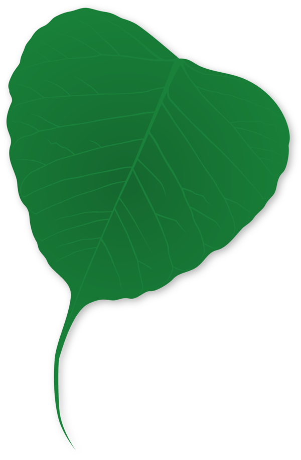 Transparent Plant Leaf Plant Line Clipart for Nature